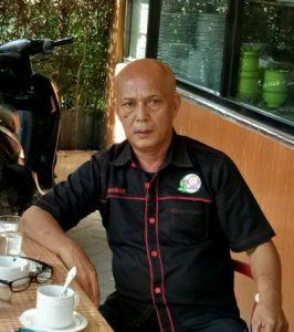 Penulis Iskandar Hasibuan